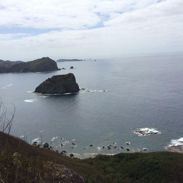 小笠原諸島 父島 カリブリ 1