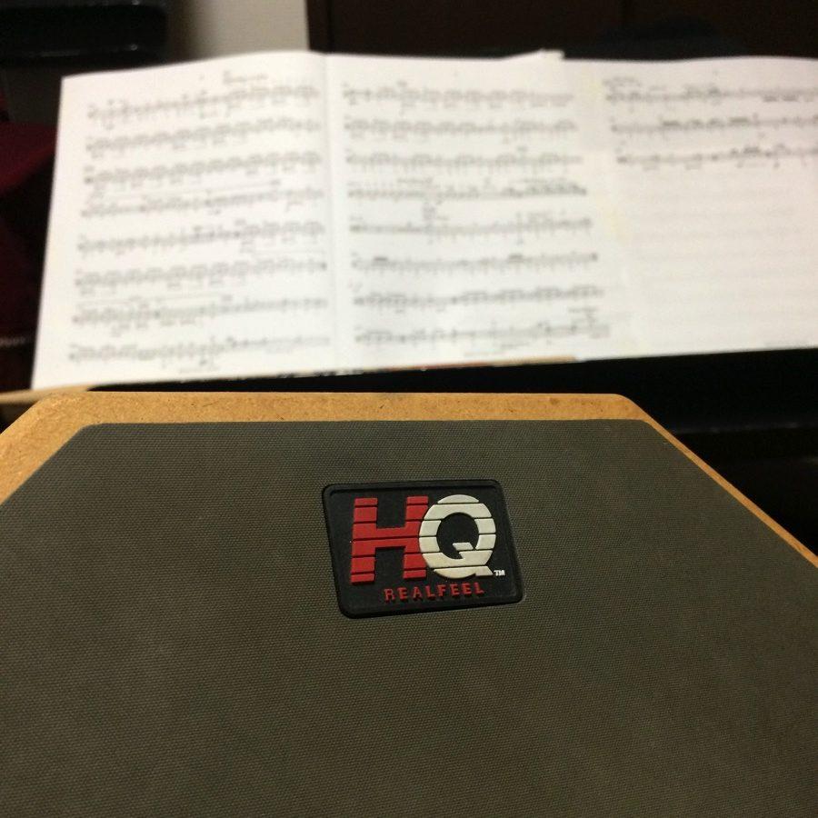 楽器練習に癒し効果.JPG